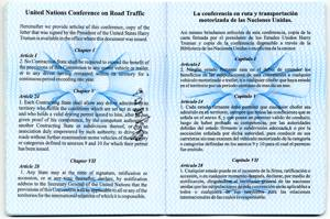 international driving license description